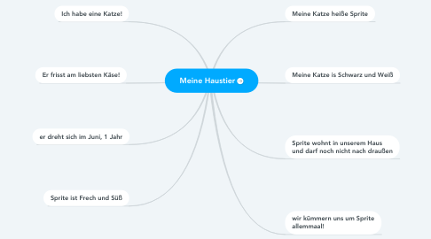 Mind Map: Meine Haustier