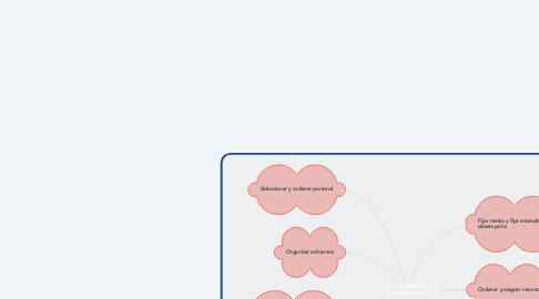 Mind Map: Función o elementos de un Gerente General