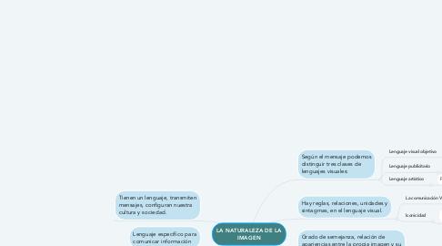 Mind Map: LA NATURALEZA DE LA IMAGEN