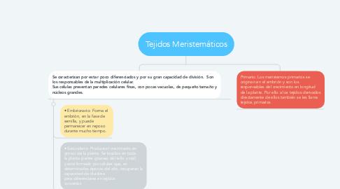 Mind Map: Tejidos Meristemáticos