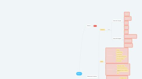 Mind Map: TEMA 4