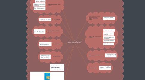 Mind Map: Relación médico paciente y normalidad de la historia clínica
