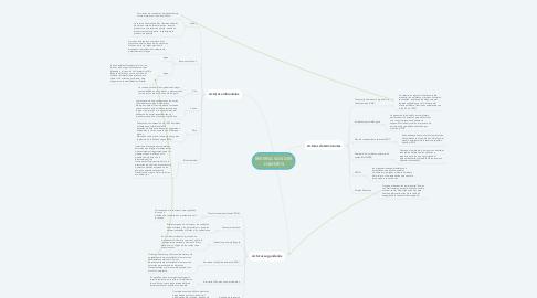 Mind Map: RESERVA VAN DER HAMMEN