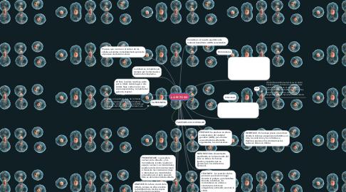 Mind Map: LA MITOSIS