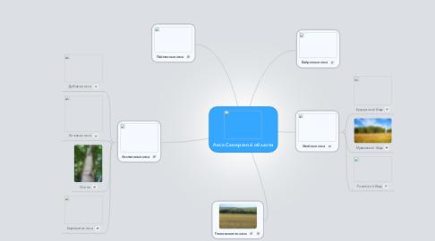 Mind Map: Леса Самарской области