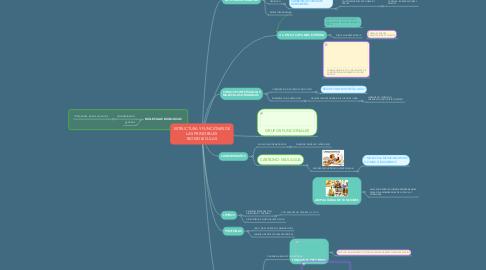 Mind Map: ESTRUCTURA Y FUNCIONES DE LAS PRINCIPALES BIOMOLECULAS