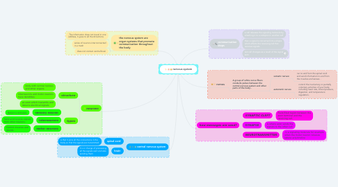 Mind Map: nervous system