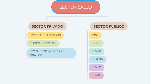 Mind Map: SECTOR SALUD
