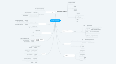 Mind Map: SEGURIDAD DE REDES