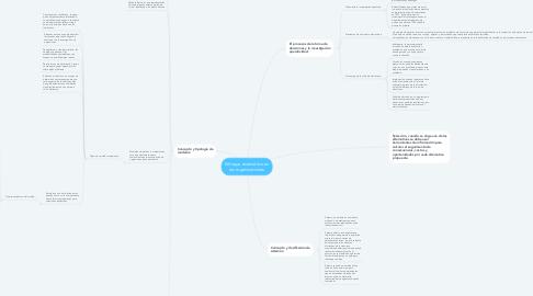 Mind Map: Enfoque sistemático en las organizaciones