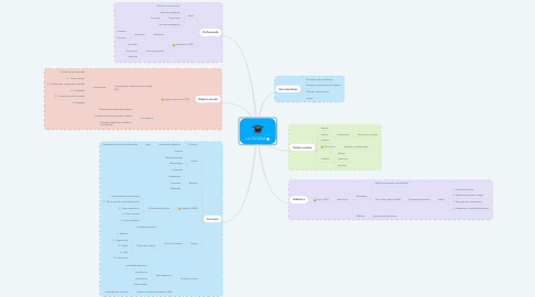 Mind Map: LA ESCUELA