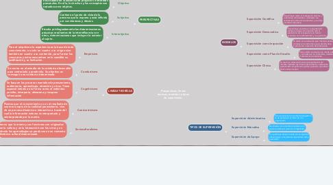 Mind Map: Perspectivas, líneas teóricas, modelos y tipos de supervisión.