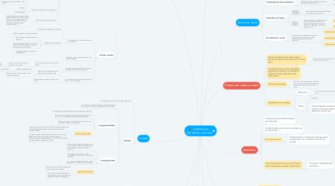 Mind Map: CAPÍTULO 3 Diferencias culturales