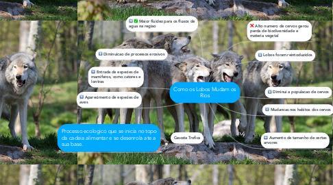 Mind Map: Como os Lobos Mudam os Rios
