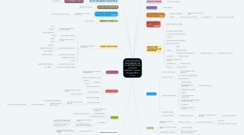 Mind Map: FUNCIÓN DE LA ENFERMERIA EN LA ATENCIÓN DE LA SALUD MENTAL: Carmen Alvarado Bello 6°ce