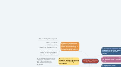 Mind Map: ANATOMIA Y FISIOLOGIA DEL ESOFAGO