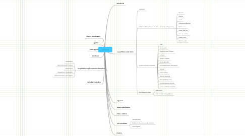 Mind Map: polifonia