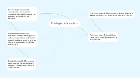 Mind Map: Fisiología de la muda