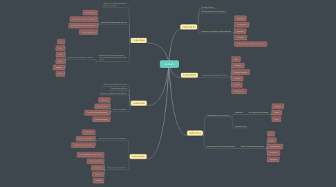 Mind Map: NORMAS