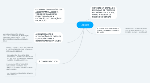 Mind Map: LEI 8080