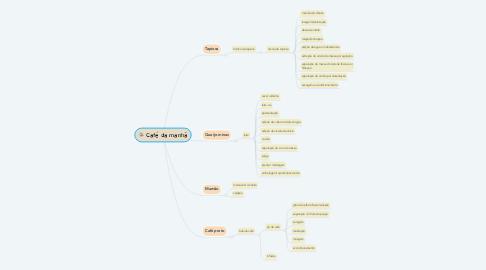 Mind Map: Café da manhã