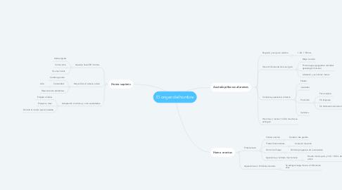 Mind Map: El origen del hombre