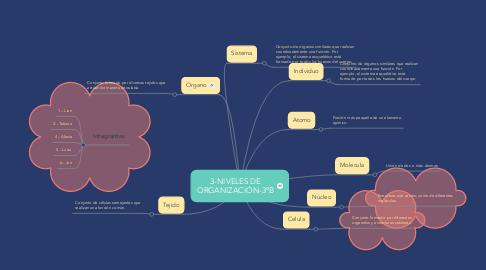 Mind Map: 3-NIVELES DE ORGANIZACIÓN-3ºB