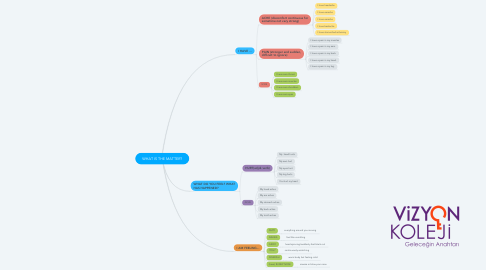 Mind Map: WHAT IS THE MATTER?