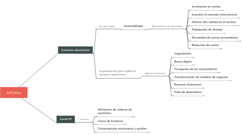Mind Map: MiPyMes
