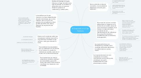 Mind Map: El Desarrollo en el Ser Humano