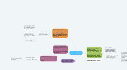 Mind Map: ácidos nucléicos