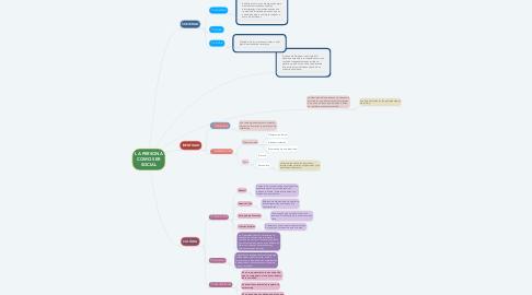 Mind Map: LA PERSONA COMO SER SOCIAL