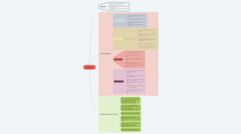 Mind Map: Protocolo