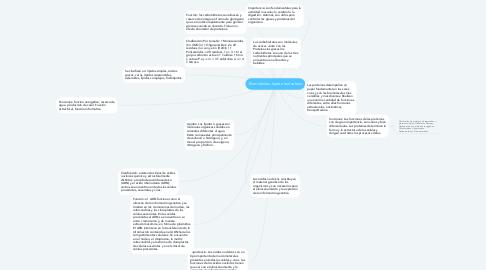 Mind Map: Biomoléulas Jeyson leal solano
