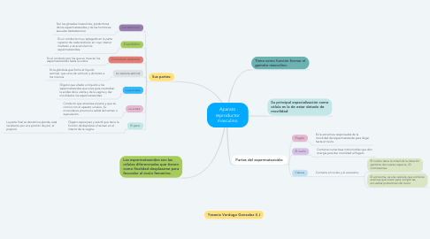 Mind Map: Aparato reproductor masculino