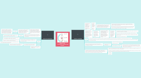 Mind Map: CONTRATO DE SOCIEDAD