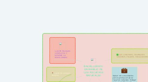 Mind Map: BACHILLERATO EN MANEJO DE LOS RECURSOS NATURALES