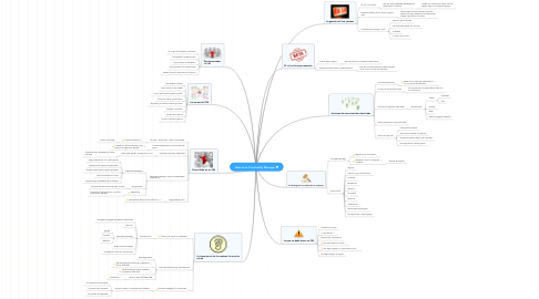 Mind Map: Qué es un Community Manager