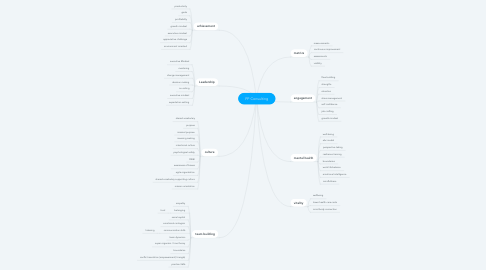 Mind Map: PP Consulting