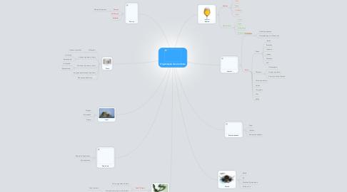 Mind Map: Organização de uma festa