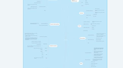 Mind Map: GTC 185
