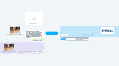 Mind Map: The cycle of cholera
