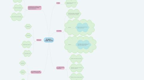 Mind Map: CONSEJO Y ORIENTACION