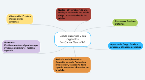Mind Map: Célula Eucariota y sus organelos Por Carlos García 9-B