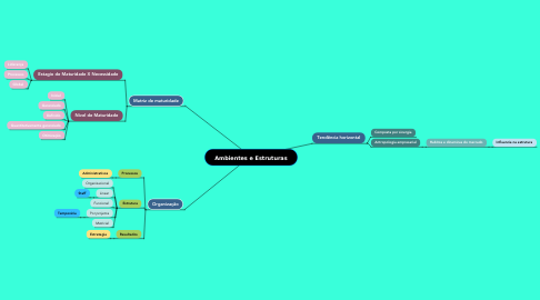 Mind Map: Ambientes e Estruturas