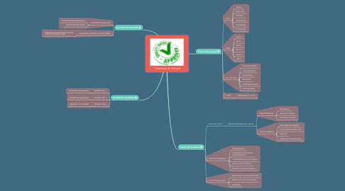 Mind Map: Qualidade de Software