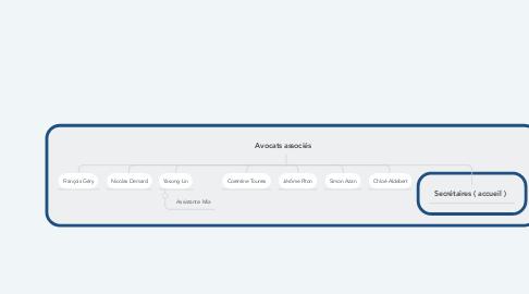 Mind Map: Avocats associés