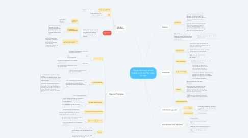 Mind Map: Mapa Conceptual del Sistema de las Naciones Unidas