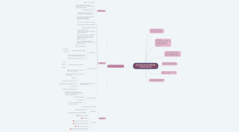 Mind Map: AVALUAR NO ÉS SINÒNIM  DE QUALIFICAR