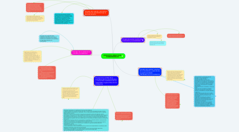 Mind Map: PRINCIPIOS DIDACTICOS FUNDAMENTALES